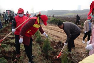 汝州市残联组织开展义务植树活动