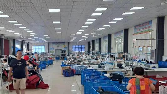 原阳县齐街镇:好环境迎来产业百花齐放