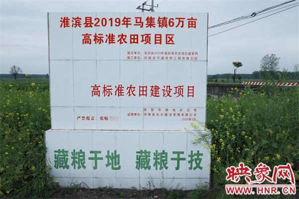 """淮滨:高标准农田建设让万亩农田成""""聚宝盆"""""""