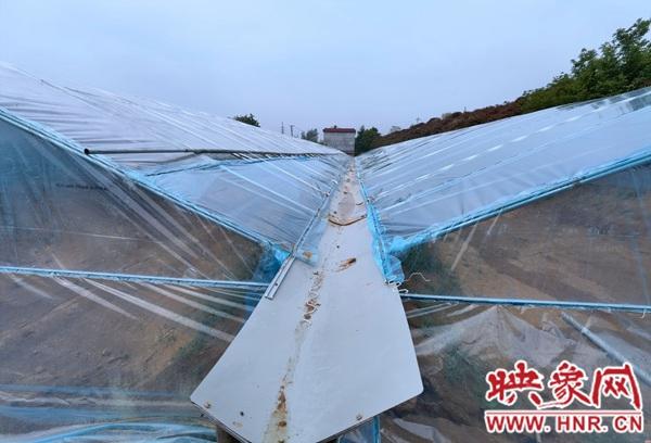 西平县建成河南省首家南美白对虾苗种育苗车间