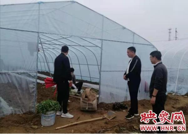 平顶山郏县黄道镇:大棚种植托起乡村振兴梦
