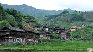 农业农村部:推动脱贫地区产业可持续发展