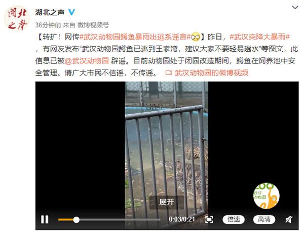 武汉突降暴雨,动物园鳄鱼跑出来了?
