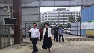 南阳市副市长阿颖带队到仲景街道督导巩卫迎复审工作
