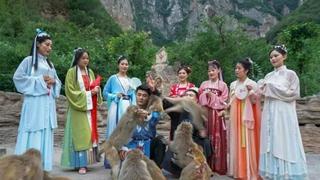 国潮来袭!中国猴山邀您共赴沉浸式盛宴,一起来放粽