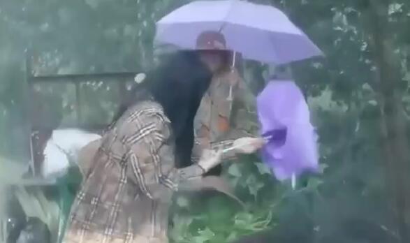 突遇暴雨果农不知所措 过路车主热心送伞:随手做的