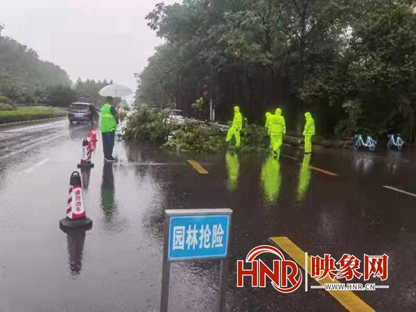 漯河迎来持续性强降雨到来 市区防汛排涝马力全开