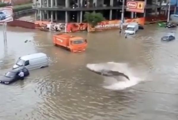 紧急辟谣!关于郑州暴雨的这些消息别信别传