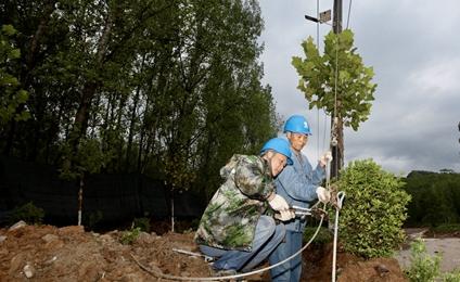 暴雨来袭 鲁山县供电公司紧急抢修保供电