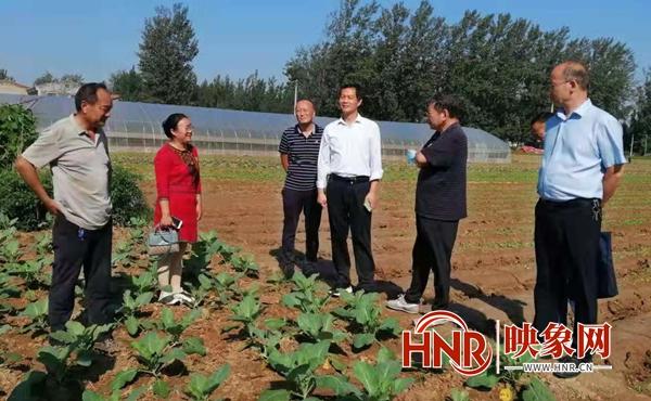 开封通许县:农技人员指导村民科学种植蔬菜