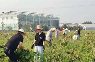 宝丰县荣泽水利公司组织开展义务劳动