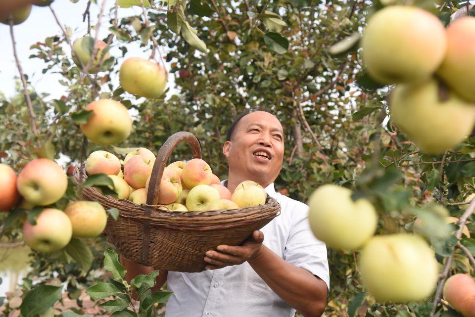杞县:一村一品一经济 农民生活甜如蜜