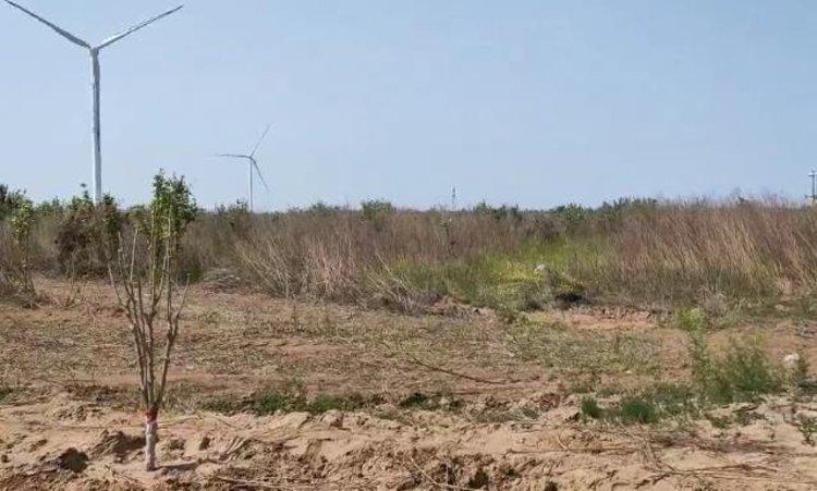2600多亩果园荒废2年多 群众500多万租地款多次反映至今未兑现
