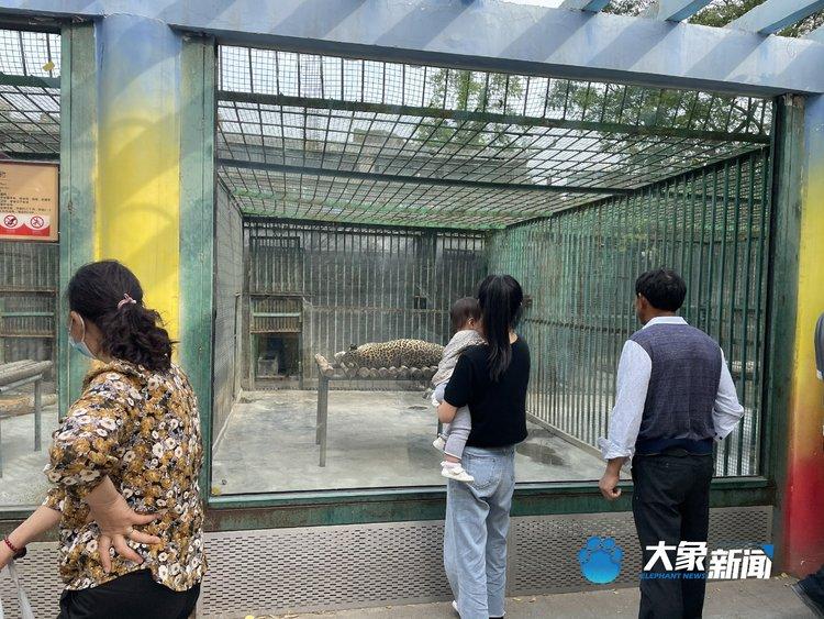 郑州动物园游玩安全吗?巡逻人员:猛兽出逃不太可能