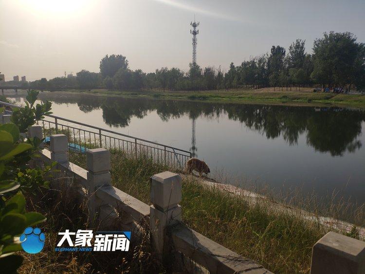两女一男!郑州索须河3人溺亡 疑似营救宠物落水