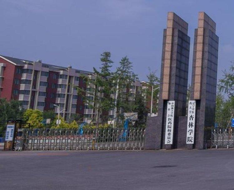 辽宁中医药大学杏林学院2021年招生章程