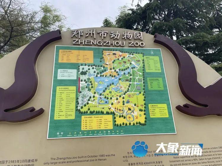 金钱豹出逃引热议:郑州动物园游玩安全吗?猛兽出逃可能吗?